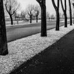 © Hans Tschida | Parkplatz